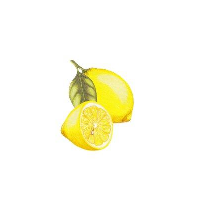 Adesivo illustrazione limone