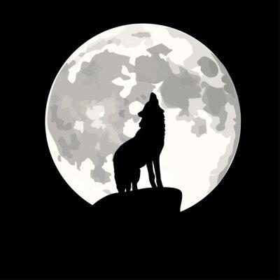 Adesivo Illustrazione Piazza del lupo che ulula alla luna.
