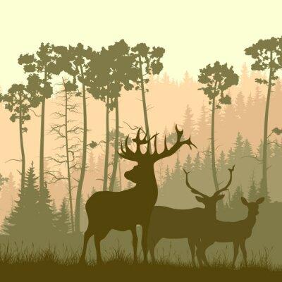 Adesivo illustrazione Piazza di alci selvatici sul margine del bosco.