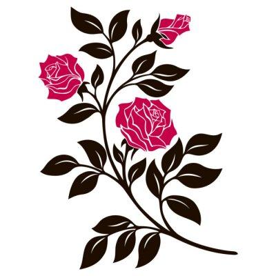 Adesivo illustrazione vettoriale, elemento di decorazione, ramo di rose in bianco e nero con fiori rossi