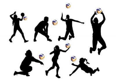 Adesivo illustrazione vettoriale sfondo grafico giocatori di pallavolo lo sport