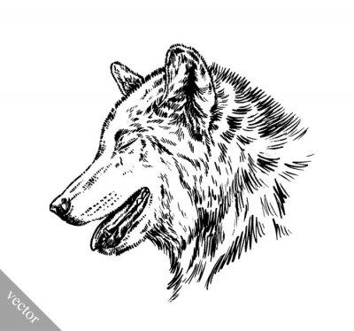 Adesivo in bianco e nero incide isolato lupo