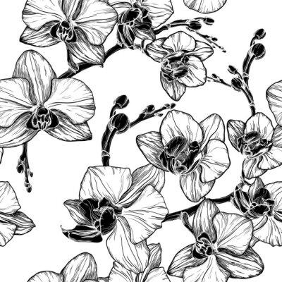 Adesivo in bianco e nero seamless con fiori di orchidea