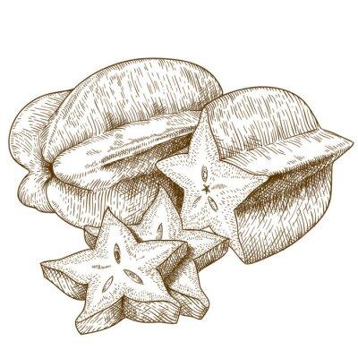 Adesivo incisione illustrazione antico di carambola