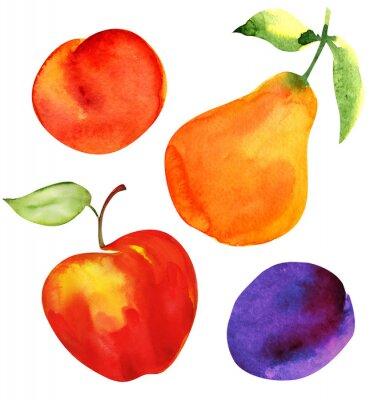 Adesivo Insieme della frutta. Mela, pera, prugna e albicocca.