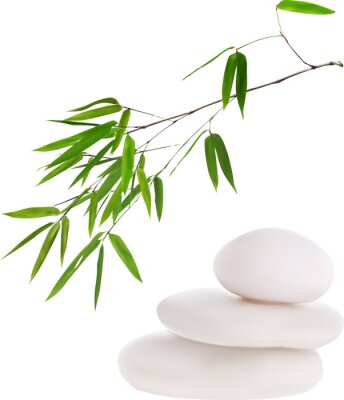 Adesivo isolated white stones and green bamboo illustration