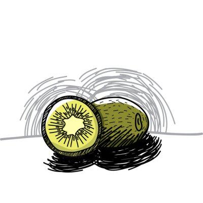 Adesivo Kiwi con disegnato-vettore inchiostro mano