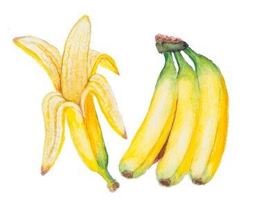 Adesivo L'acquerello Banana isolato su sfondo bianco