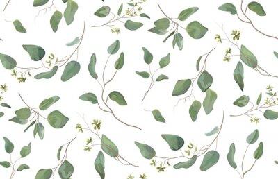 Adesivo L'albero differente dell'eucalyptus, rami naturali del fogliame con le foglie verdi semina il modello senza cuciture tropicale, stile dell'acquerello. Vector il bello fondo bianco isolato illustrazion