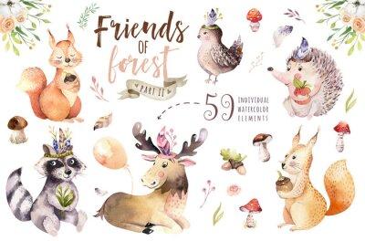 Adesivo L'istrice della boemia del bambino dell'acquerello, l'animale scoiattolo e le alci svegli del fumetto per vivaio, foresta ha isolato l'illustrazione della foresta per i bambini. Animali coniglietti