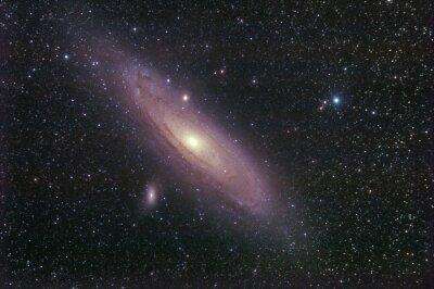 Adesivo La Galassia di Andromeda