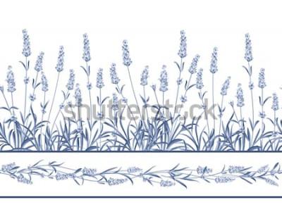 Adesivo La linea di cornici lavanda senza cuciture. Mazzo di fiori di lavanda su sfondo bianco. Illustrazione vettoriale