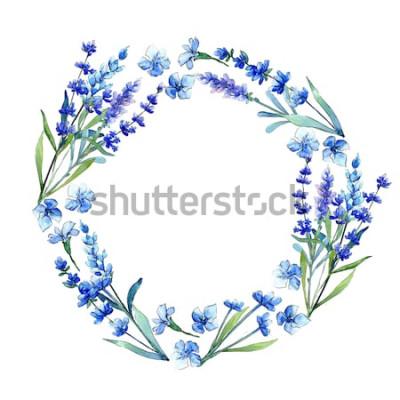 Adesivo Lavanda blu. Fiore botanico floreale Struttura selvaggia del wildflower della foglia della molla in stile acquerello. Wildflower Aquarelle per sfondo, trama, motivo avvolgente, cornice o bordo.