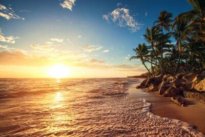 Adesivo Le palme sulla spiaggia tropicale
