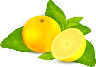 Adesivo Limoni freschi con foglie sfondo bianco