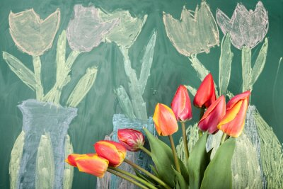 Adesivo Live flowers and children's chalk drawing of tulips on a blackboard