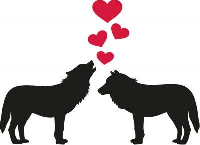 Adesivo Lupi in amore