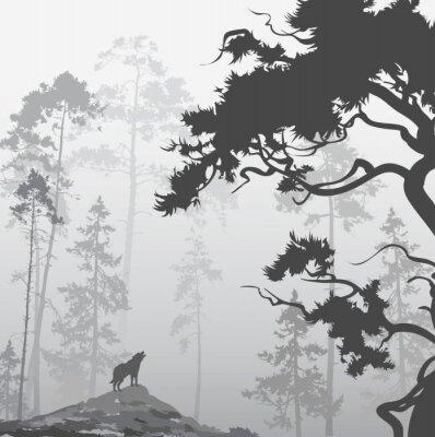 Adesivo lupo nella foresta