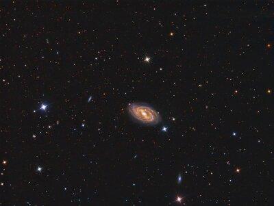 Adesivo M109 Galaxy ripreso con un telescopio e camera CCD scientifica