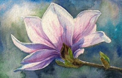 Adesivo Magnolia fiore su branch.Watercolors.