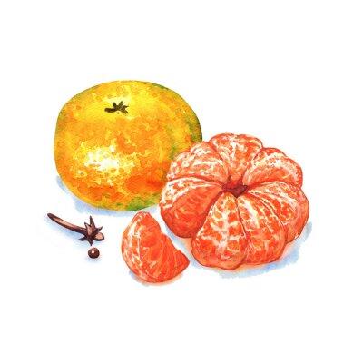 Adesivo mandarino o mandarino frutta isolato su sfondo bianco