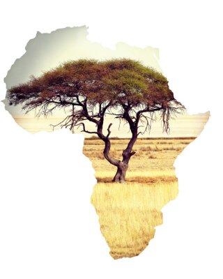 Adesivo Mappa dell'Africa concetto continente con acacia