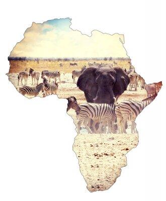 Adesivo Mappa di africa concetto continente, Safari su pozza d'acqua con gli elefanti