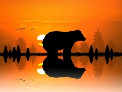 Adesivo marrone nella foresta al tramonto