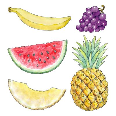 Adesivo Maschera dell'acquerello di frutti diversi