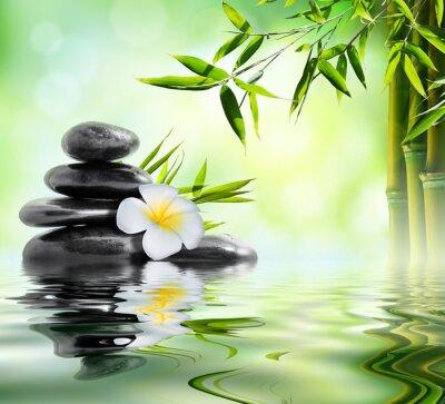Adesivo massaggio termale in giardino con frangipani e bambù