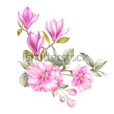 Adesivo Mazzo di magnolia Carta di invito per matrimonio, compleanno e altre vacanze e sfondo estivo. Illustrazione botanica.