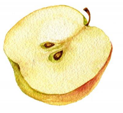 Adesivo Metà disegno mela da acquerello