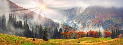 Adesivo Misty autunno Transcarpazia