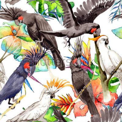 Adesivo Modello del pappagallo dell'ara bianca dell'uccello del cielo in faunistica selvatica da stili dell'acquerello. Libertà selvaggia, uccello con ali volanti. Uccello acquerelli di sfondo,