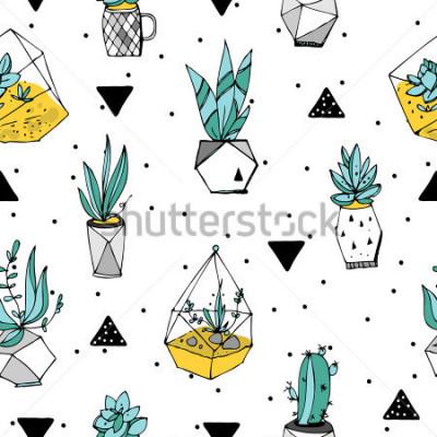 Adesivo Modello senza soluzione di terrario. Trama di succulente Illustrazione minimalista disegnata a mano. Design scandinavo con elementi floreali e geometrici