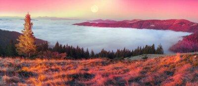 Adesivo Nebbia in autunno