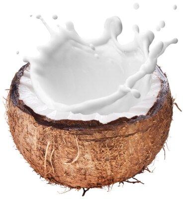 Adesivo Noce di cocco con il latte spruzzi all'interno.