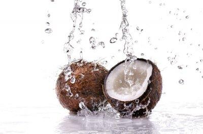 Adesivo noce di cocco spruzzata