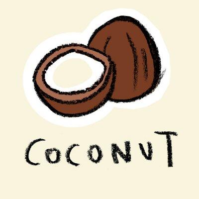 Adesivo Noce di cocco su sfondo chiaro