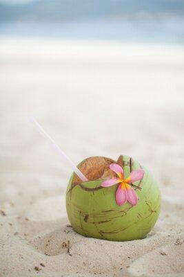 Adesivo Noce di cocco sulla spiaggia