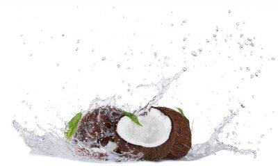 Adesivo Noci di cocco Cracking in acqua spruzzata su bianco