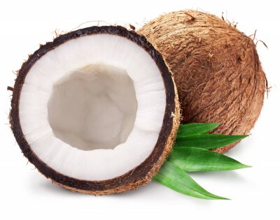 Adesivo Noci di cocco e il suo mezzo con foglie.