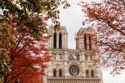 Adesivo Notre Dame, Parigi