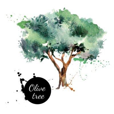 Adesivo Olive illustrazione vettoriale.