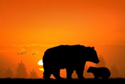 Adesivo orso bruno e il bambino orso nella foresta