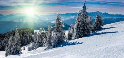 Adesivo Paesaggio invernale panoramico in montagna. Alberi coperti di neve e cime in lontananza.