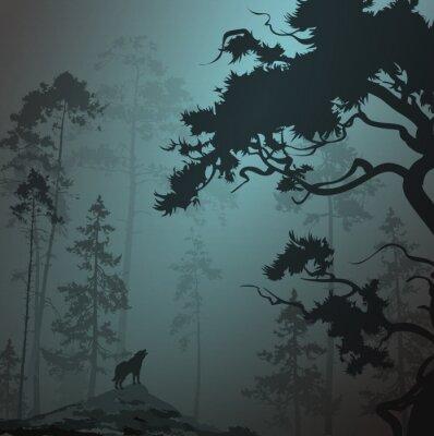 Adesivo paesaggio nebbioso con silhouette di foresta, pini e il lupo, chiaro di luna