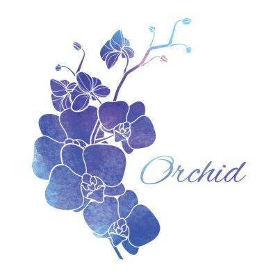 Adesivo Painted viola Acquerello Orchidee