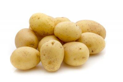 Adesivo Patate su sfondo bianco. Nuovo Raccolto.