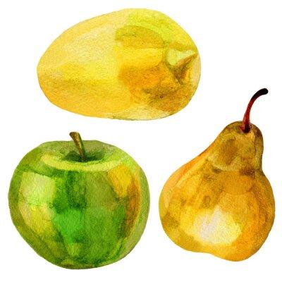 Adesivo Pera, disegnati a mano illustrazione di banana pittura ad acquerello su sfondo bianco